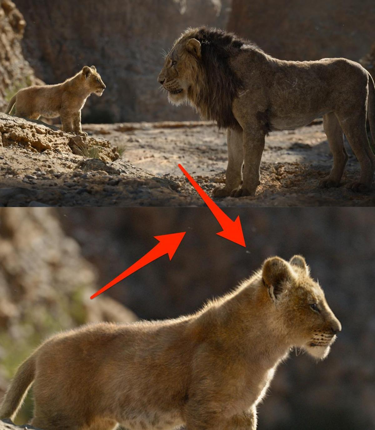 45 Biggest Differences Between The Lion King Remake And The Original